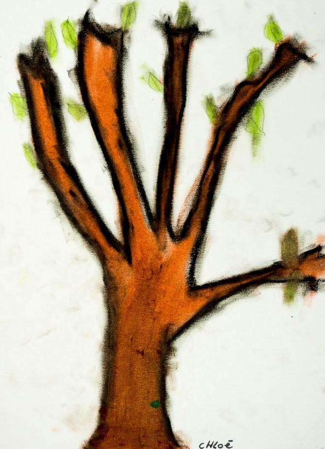 Des arbres et des mains