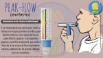 Peak-flow: Debitômetro