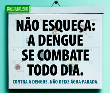 Dengue (2/3)