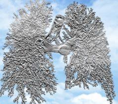 Web de ventilación mecánica para Enfermería