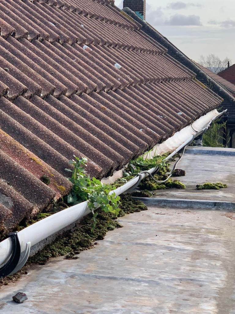 Roofing Tips That Everybody Should Know About