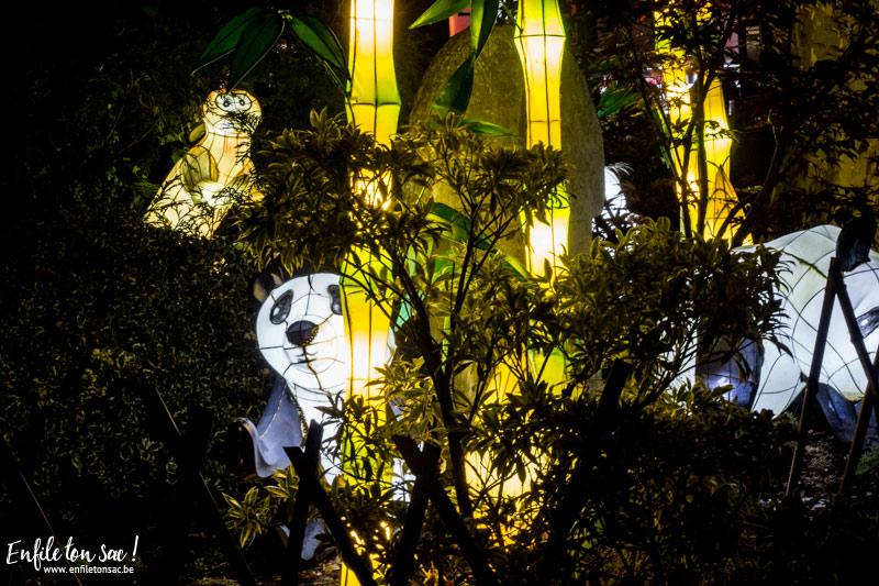 pairi daiza nuits magiques Les estivales de Pairi Daiza,  le parc ouvert jusquà 23h   dates, tarifs,info et programmes.