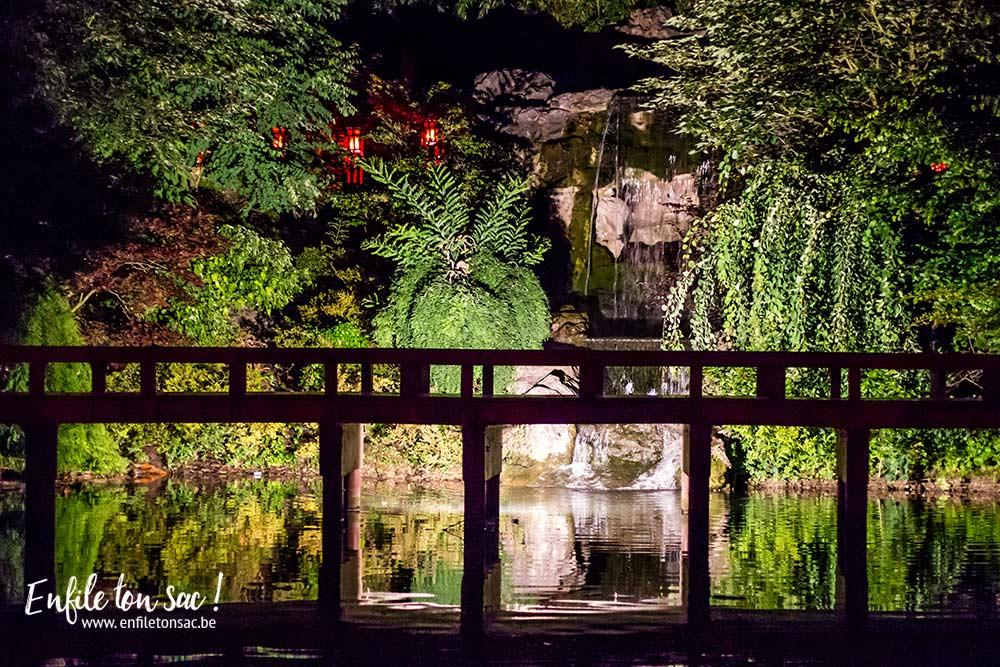 pairi daiza nocturnes nuit estivales Pairi Daiza Estivales 2016 , mon avis, photos et vidéo.