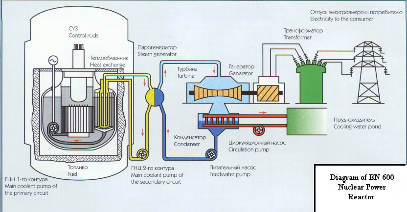 First unintended nuclear meltdown idaho falls 1655 for Pool design reactor