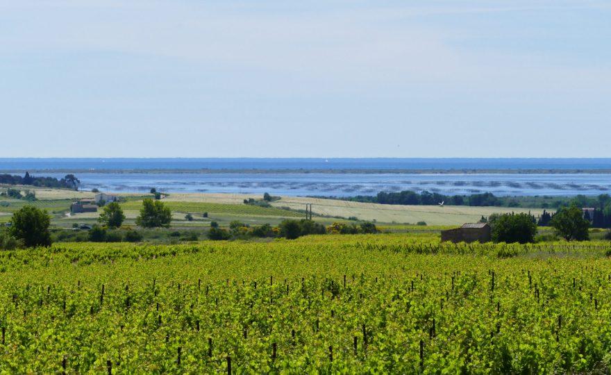 15 jours dans l'Hérault : idées d'activités pour vacanciers hyper-actifs