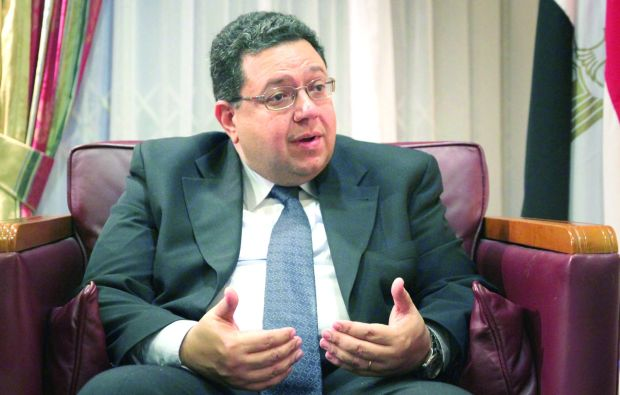 Egypt Deputy PM on Elections, Constitution