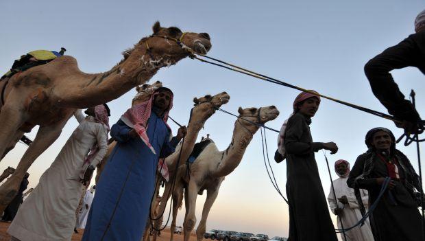 Millions set to flock to Saudi Janadriyah Festival