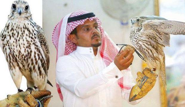 Business meets pleasure in Saudi falconry
