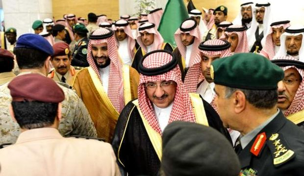 Saudis pledge allegiance to new princes