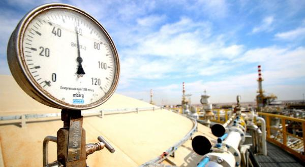 Nigerian Petroleum Minister's Declarations Cause Confusions for OPEC Members