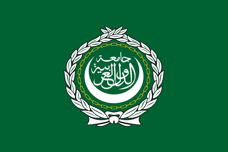 Arab Leaders Commit to Fighting Terrorism, Preserving Homeland Security at Nouakchott Summit