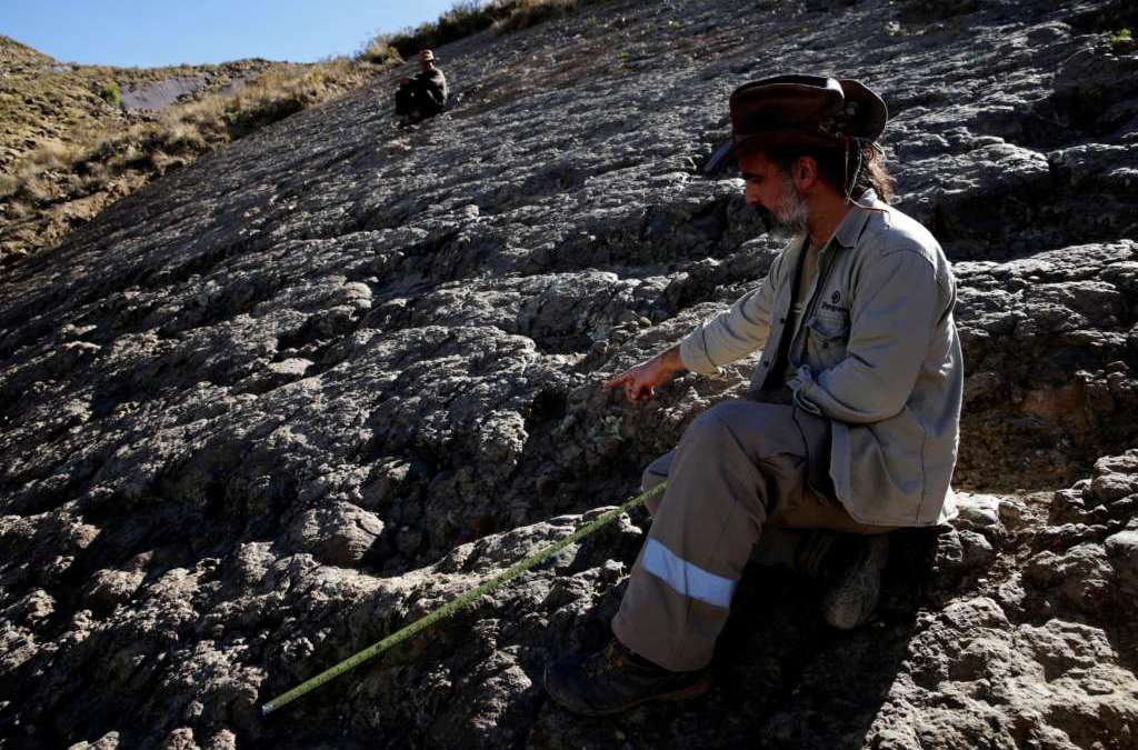 Meter-wide Dinosaur Print Found in Bolivia