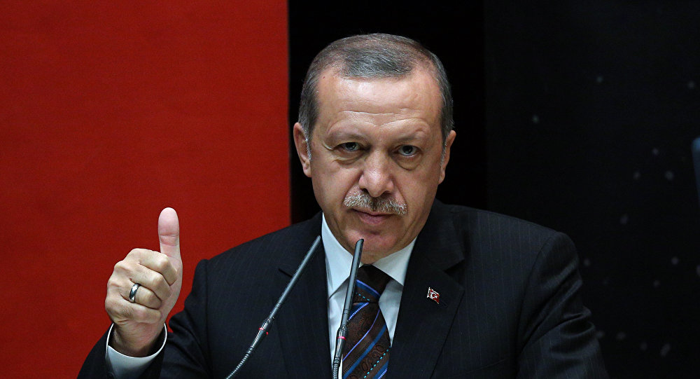 After Mending Ties with Russia and Israel, Turkey to Bury Hatchet with Egypt