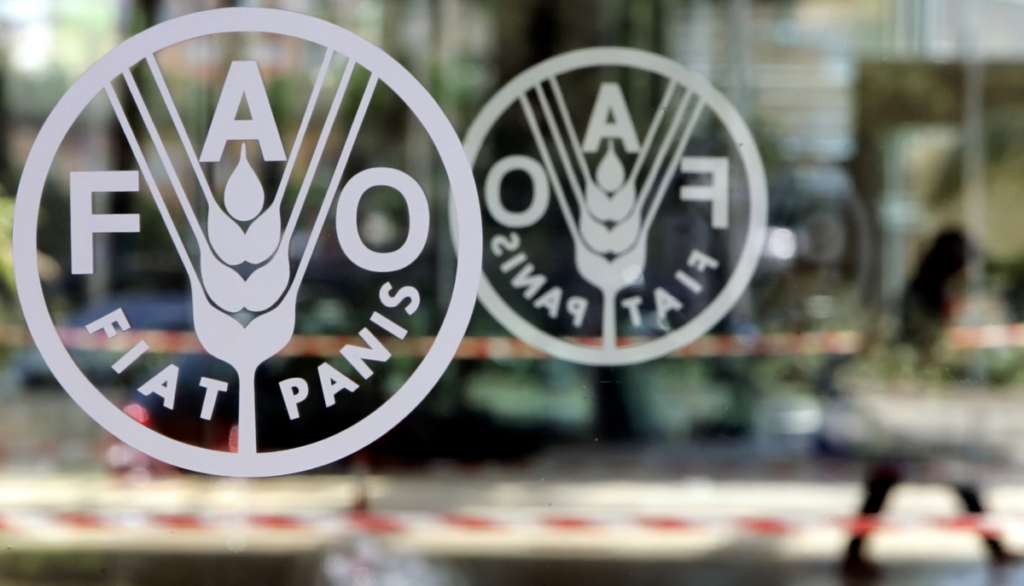FAO Representative: $100 Billion Allocated to Face Climate Change