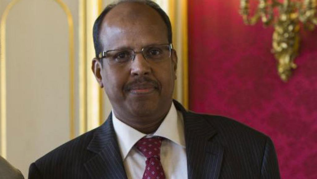 Djiboutian FM: 'No Contradiction between Presence of U.S., Chinese Military on our Territories'