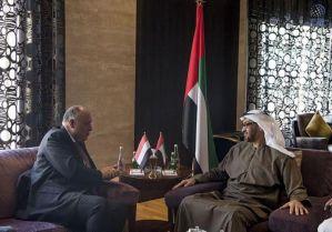 Mohamed bin Zayed receives Egypt's Foreign Minister