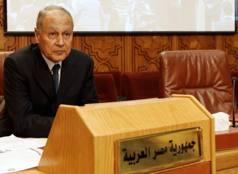 Abu al-Gheit: Palestinians Wish to Reformulate Solutions