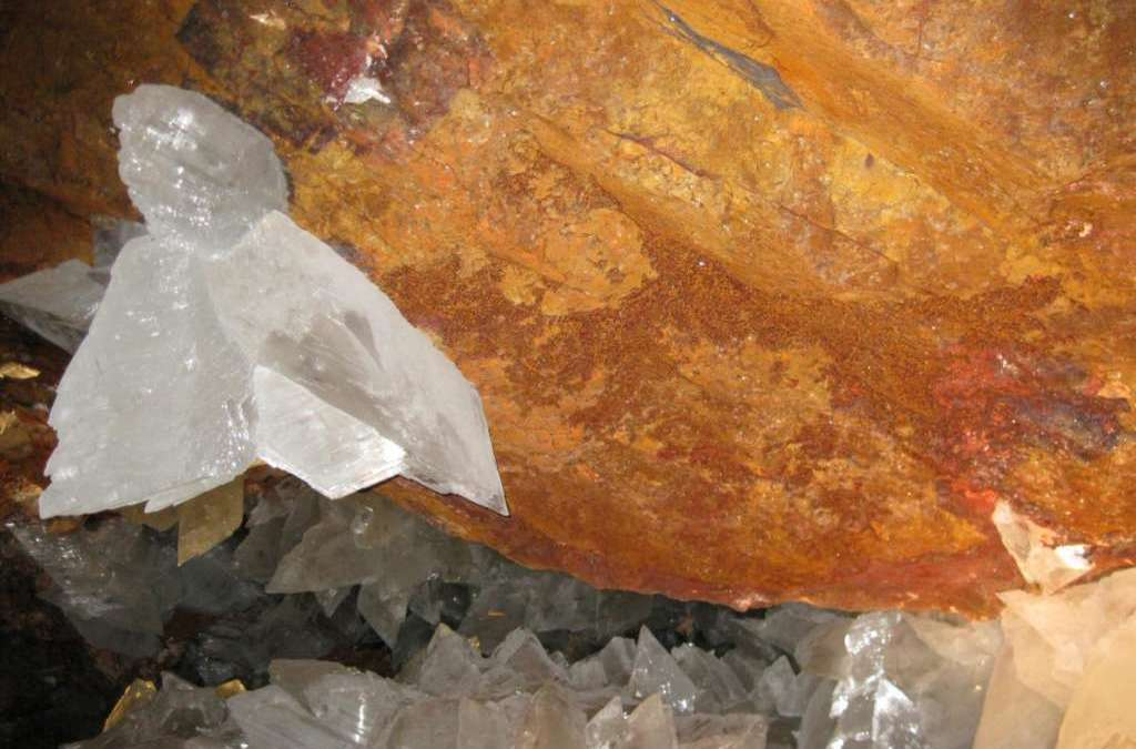 Scientists Find 50,000-Year-Old Microbes in Mexican Mine