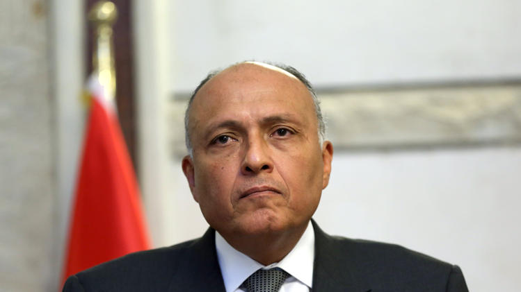 Arab-Egyptian Coordination Ahead of Sisi's Visit to Washington