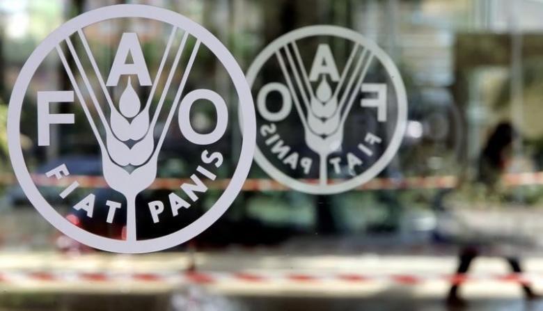 Saudi Arabia Participates at FAO Conference in Rome