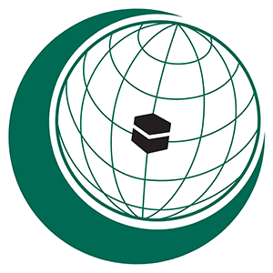 OIC  Co-Organizes London Forum on Islamophobia, Media