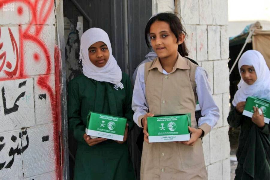 Arab League: UN Report on Yemen Lacks Accuracy