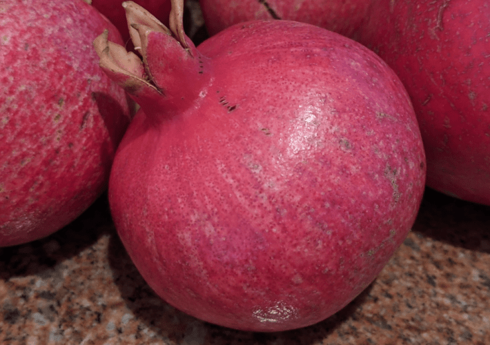 USA Culture: Pomegranate – Our First Season…