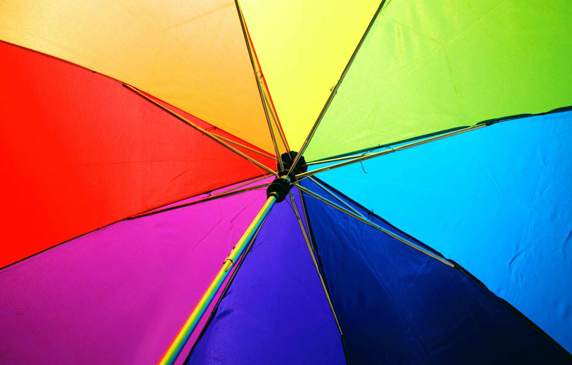 multicolored umbrella