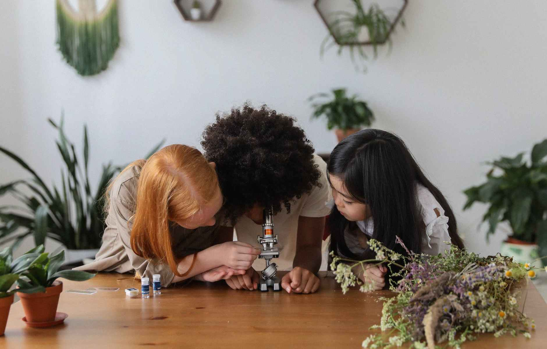 photo of young girls looking through microscope