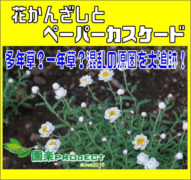 花かんざし表紙