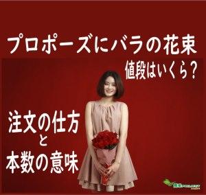 赤バラ-表紙