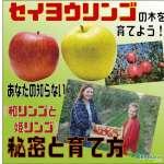 リンゴ表紙