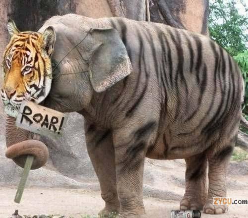 Elefante disfrazado de tigre