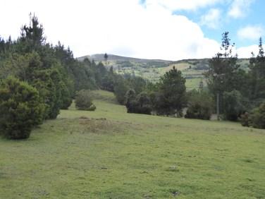 Déi hiwelig Landschaft op 300 m