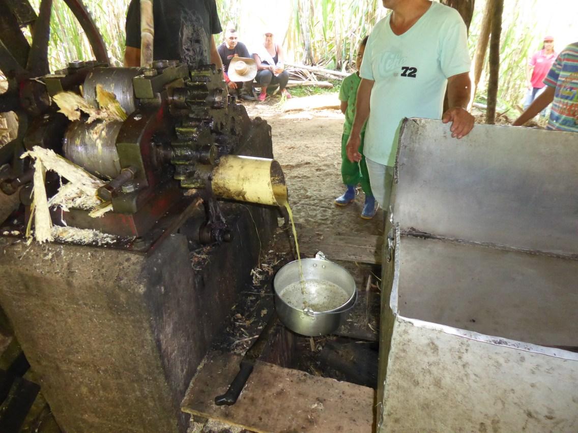 Zockerrouer gëtt gepresst an de Jus agedéckt an als Zockerkuche verkaaft