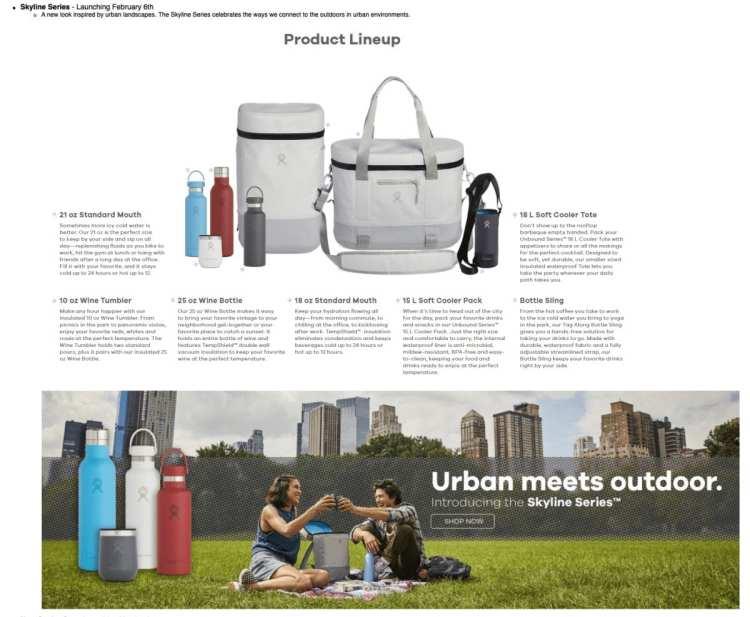 Hydro Flask Skyline Series