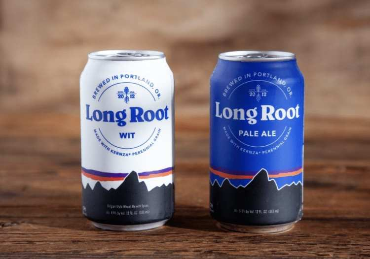 Patagonia Provisions Long Root Beers