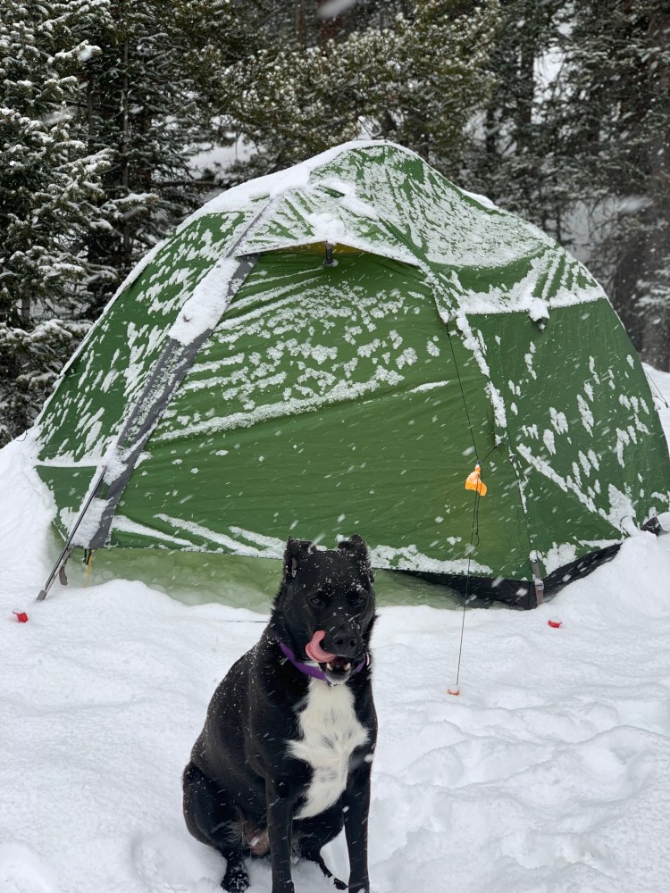 Chloe winter camping sticking her tongue out