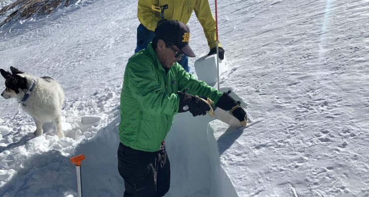 Early winter snowpack. Looking for clues