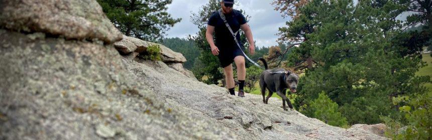 Life Handle Dog Leash- Hands Free 1