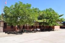 Bäume an den Schulgebäuden spenden Schatten