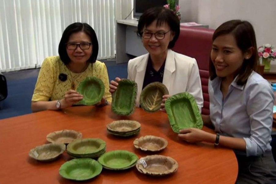 prato-engenheiras-tailândia-blog-da-arquitetura