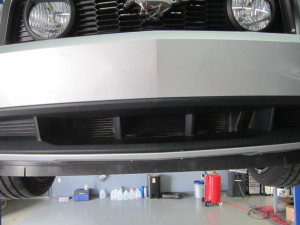 Oil cooler with bumper installed