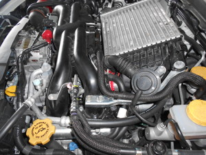 Mishimoto silicone throttle body hose