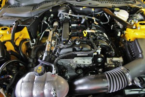 Mishimoto 2015 Ford Mustang EcoBoost engine bay