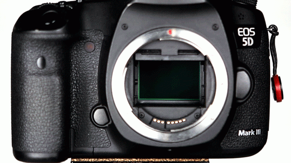 Here you can see the camera's mirror flipping up. What you can't see is the shutter behind it quickly opening and closing.