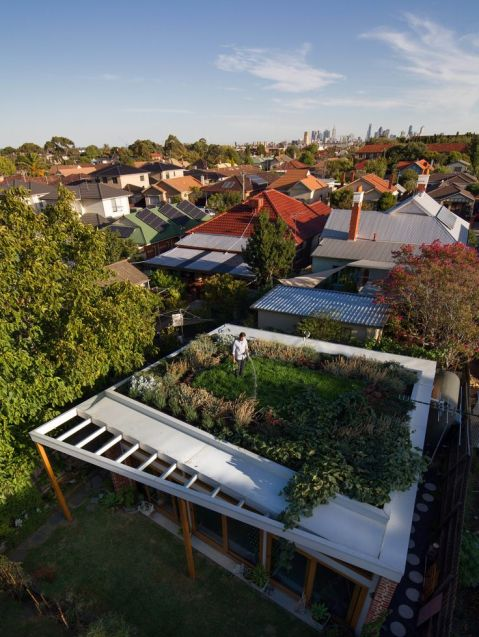 At over 500 square feet_ the house's green roof may be its most powerful—and most expensive—environm. It cost _8_0
