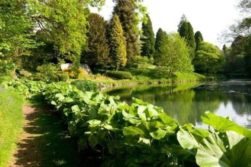 37 Beautiful Garden Pictures For You _ Engineering Basic (31)