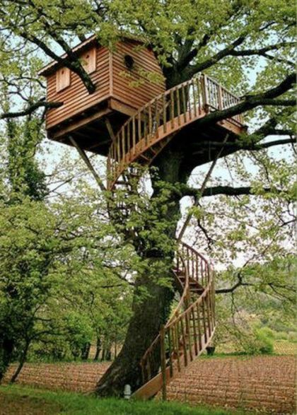 Amazing treehouse_ Probably a bit much for my husband to take on _) _Spiralstaircase