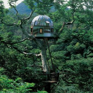 Beach Rock Tree House __ Kobayashi Takashi built this breathtaking treehouse in 2005 with the purp.